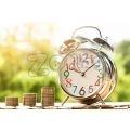 Парични заеми | 299017 - 474472