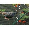 Мрежа за защита от птици | 260717 - 591237