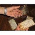 пчелни пластмасови основи Бипакс | 129215 - 597844