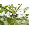 Скоби за домати и краставички | 321113 - 604322