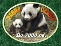 видео за обява 263572   Заеми до 7000 лв Позвъни и затвори